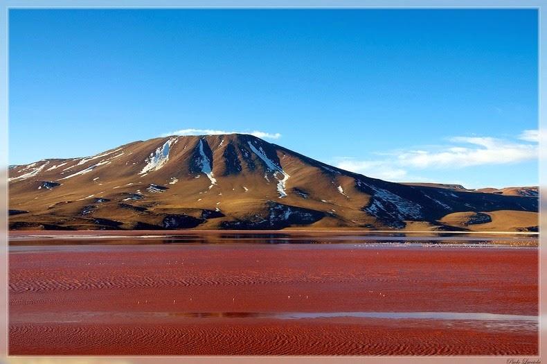 LagunaColorada01 Кровавая лагуна в Боливии