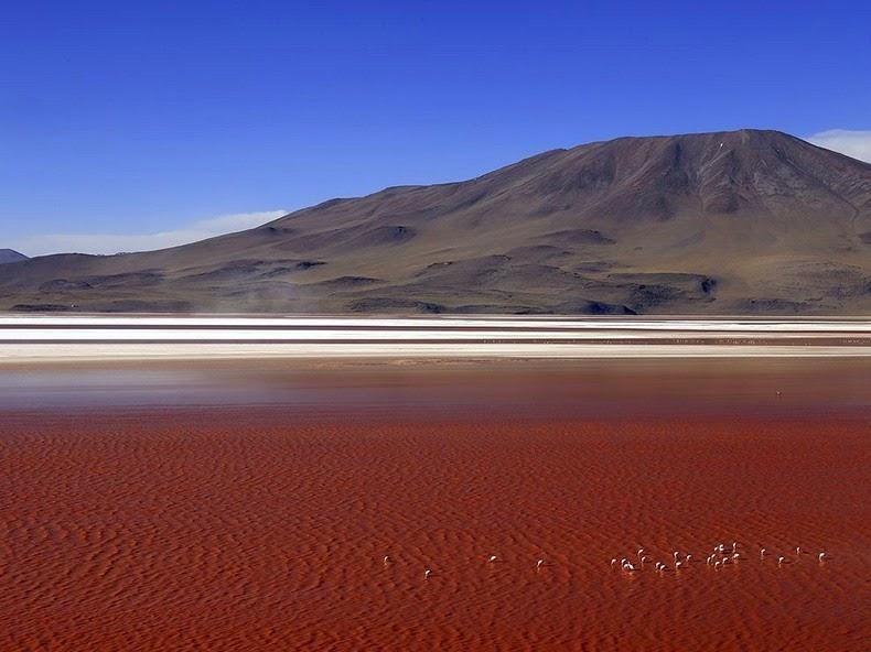 LagunaColorada02 Кровавая лагуна в Боливии