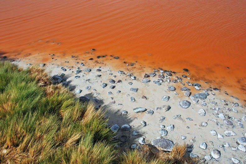 LagunaColorada08 Кровавая лагуна в Боливии