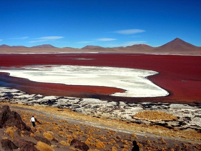LagunaColorada10 Кровавая лагуна в Боливии