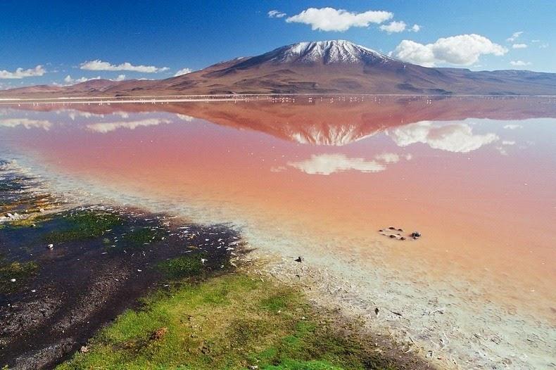 LagunaColorada13 Кровавая лагуна в Боливии