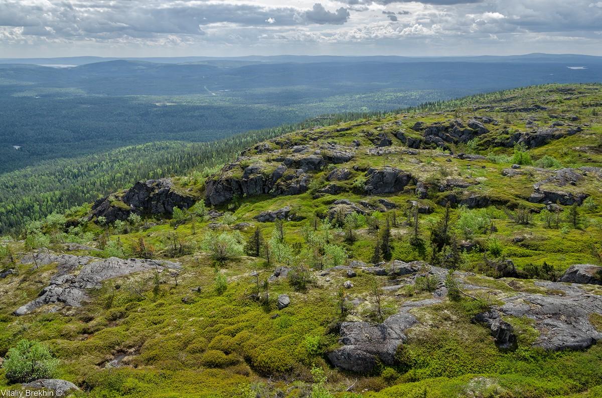 Paanajarvi18 Национальный парк Паанаярви — место, где время замедляет свой ход