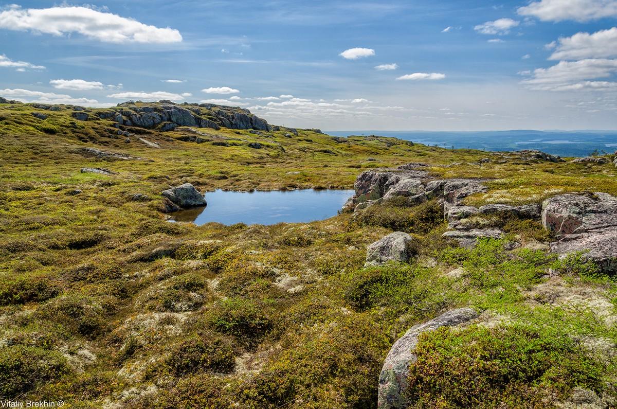 Paanajarvi19 Национальный парк Паанаярви — место, где время замедляет свой ход
