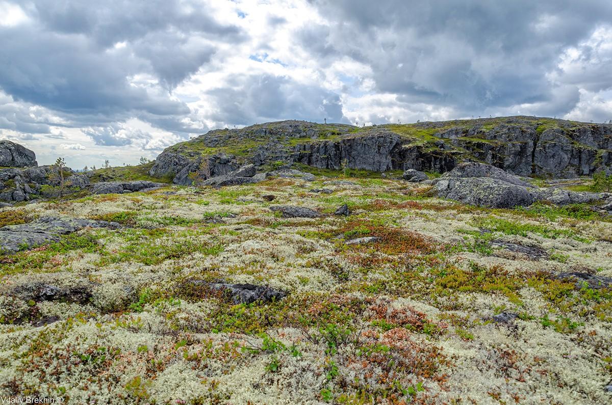 Paanajarvi32 Национальный парк Паанаярви — место, где время замедляет свой ход
