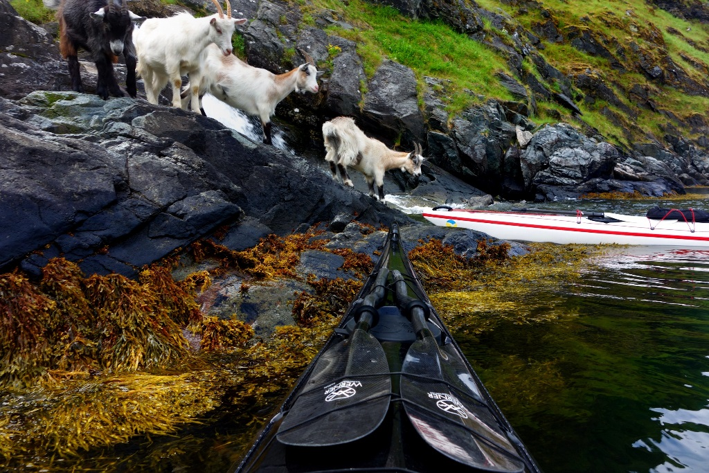 Po Norvegii na bajdarke 14 По Норвегии на байдарке