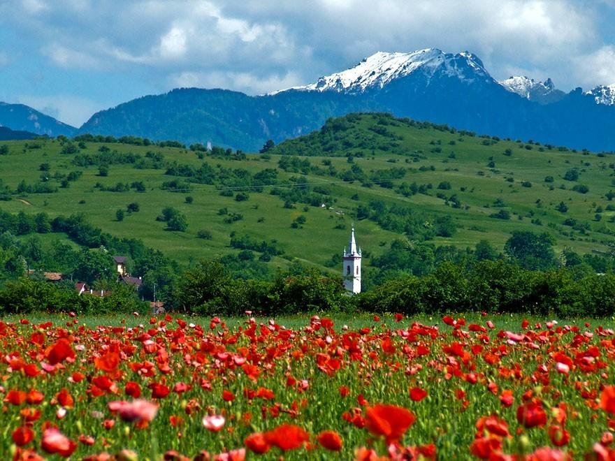 Romania23 50 причин посетить Румынию