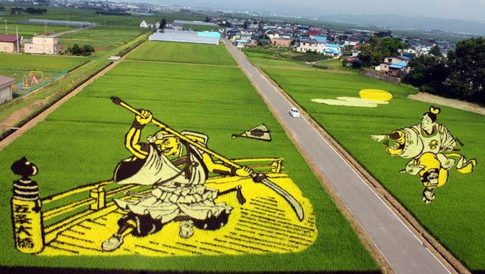 landart07 Необыкновенные картины на рисовых полях