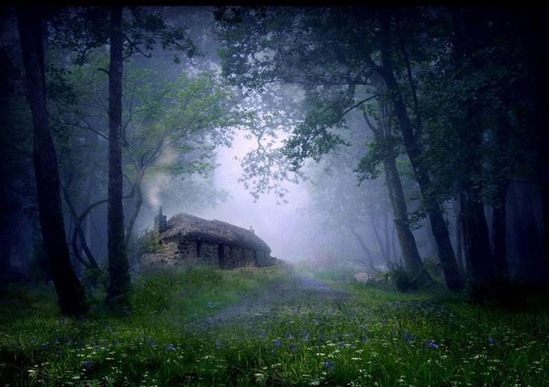 lonelyhouses01 Маленькие одинокие дома одиноких людей