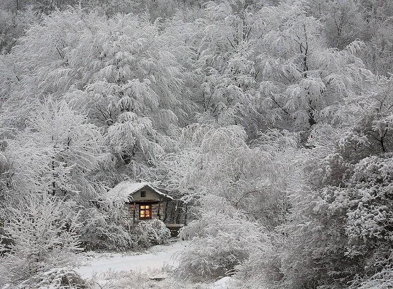 lonelyhouses05 Маленькие одинокие дома одиноких людей