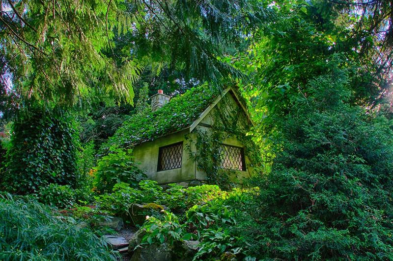 lonelyhouses07 Маленькие одинокие дома одиноких людей