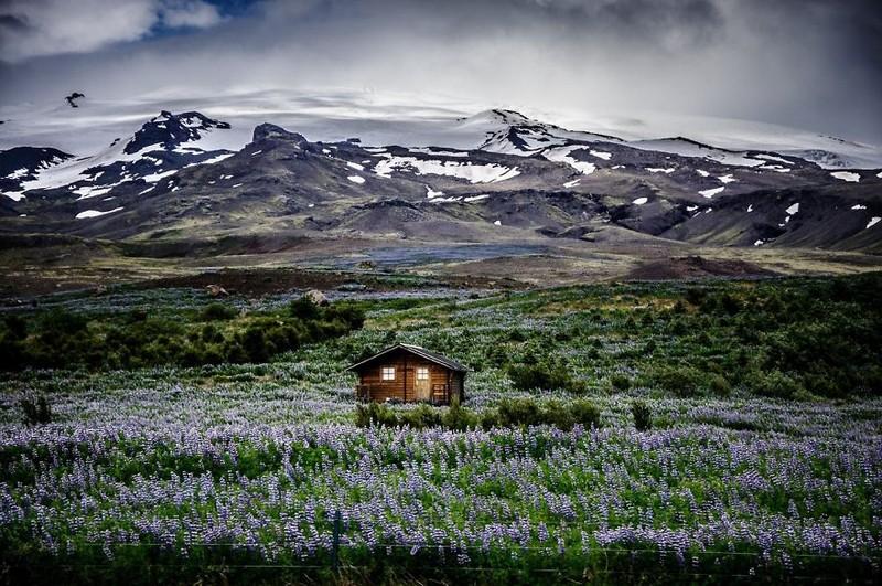 lonelyhouses09 Маленькие одинокие дома одиноких людей