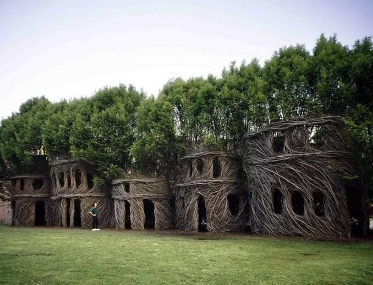 woodarchitecture06 5 необычных сооружений в гигантских деревьях