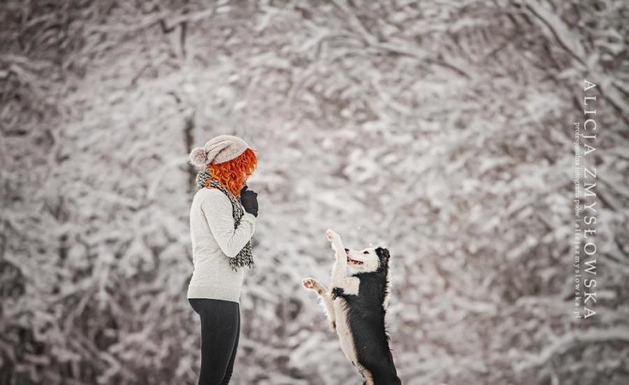 zmyslowska10 Таких крутых портретов собак еще никто не делал
