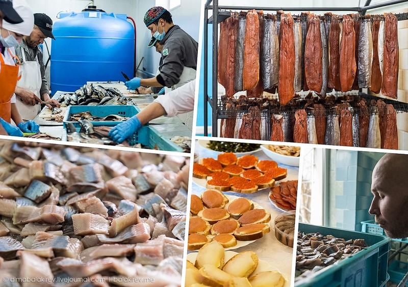 Fishplant00 Как работает рыбный завод в Магадане