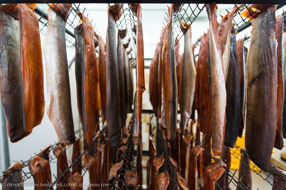 Fishplant05 Как работает рыбный завод в Магадане