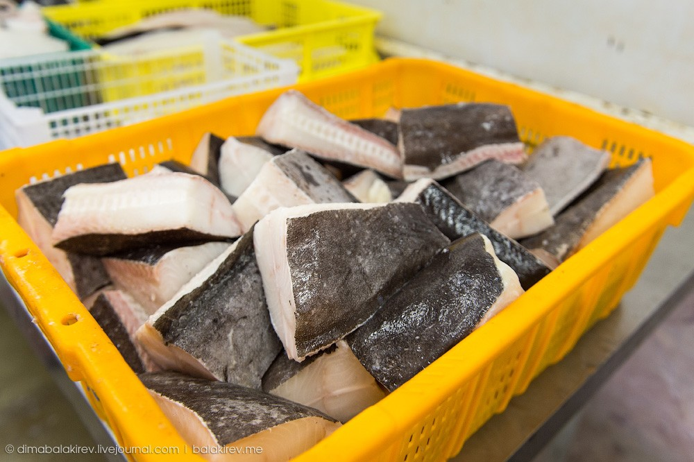 Fishplant16 Как работает рыбный завод в Магадане