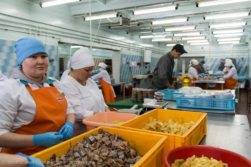 Fishplant17 Как работает рыбный завод в Магадане