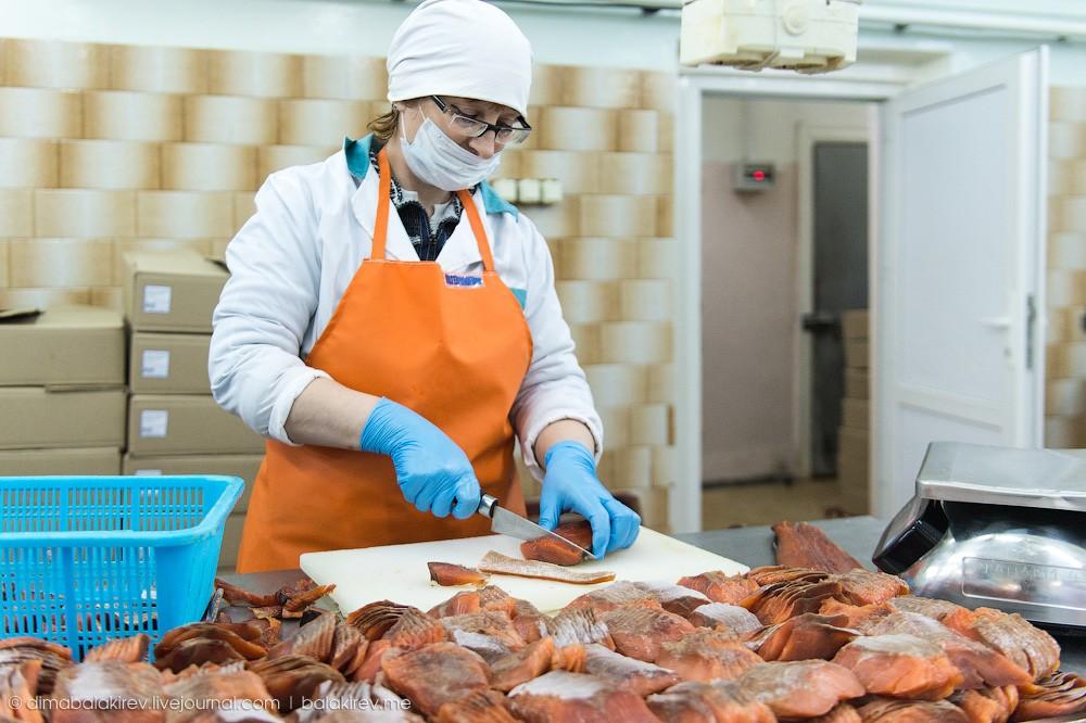 Fishplant21 Как работает рыбный завод в Магадане