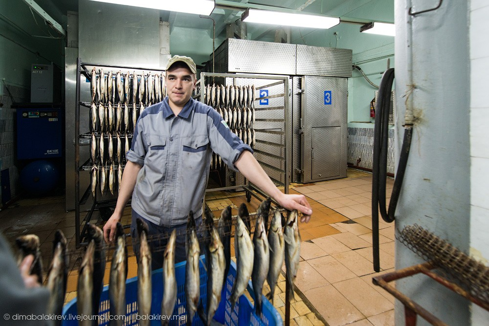 Fishplant25 Как работает рыбный завод в Магадане