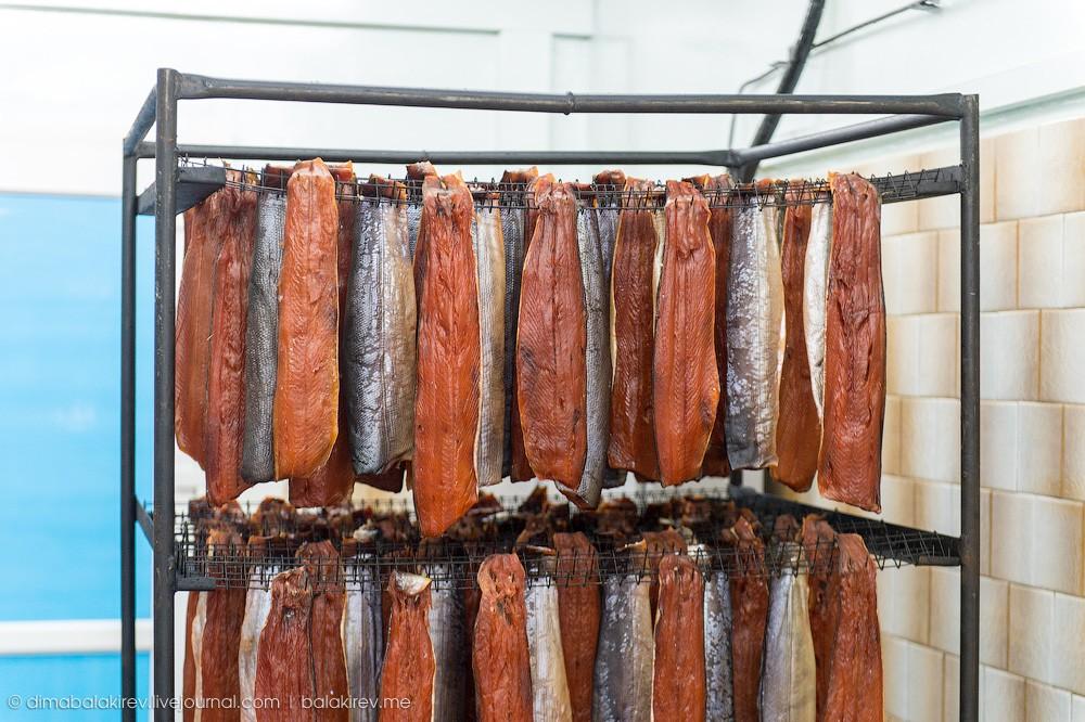 Fishplant26 Как работает рыбный завод в Магадане