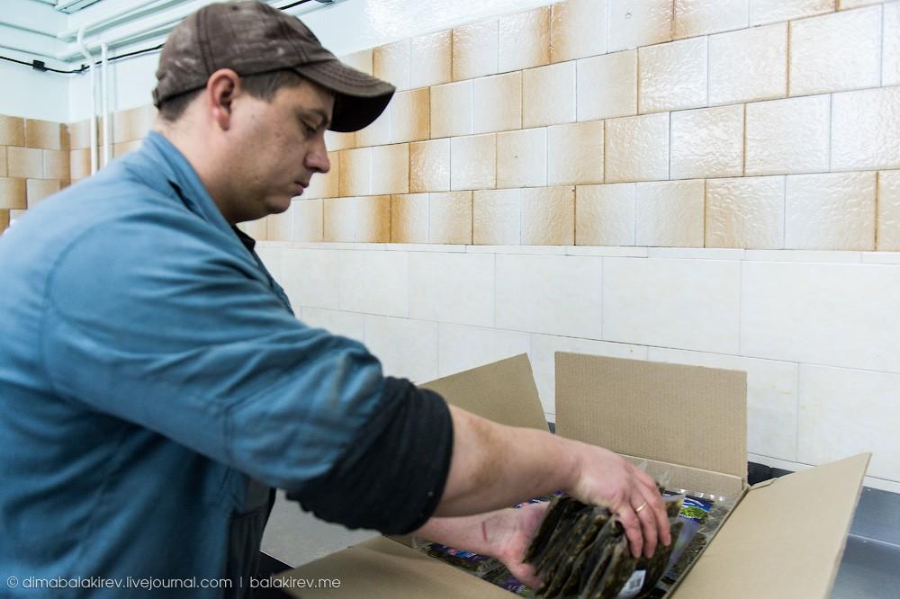 Fishplant28 Как работает рыбный завод в Магадане