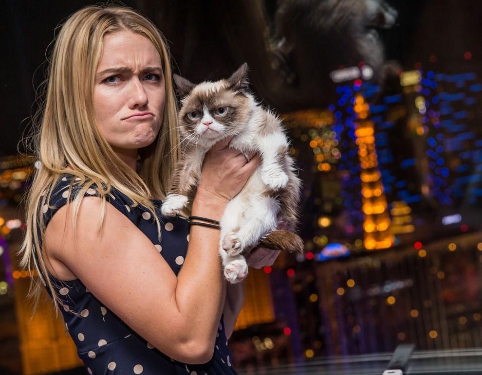 GrumpyCat01 10 заветных секретов успеха самого богатого кота в мире