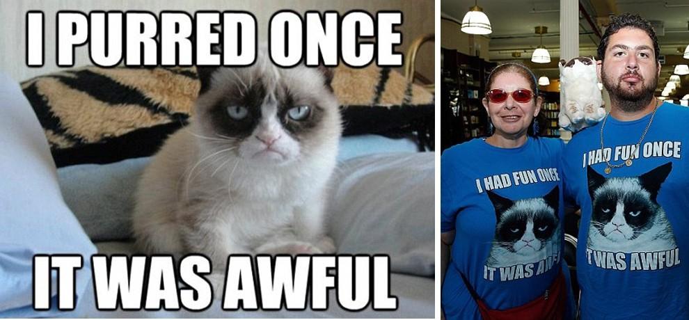 GrumpyCat05 10 заветных секретов успеха самого богатого кота в мире