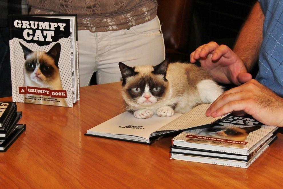 GrumpyCat06 10 заветных секретов успеха самого богатого кота в мире