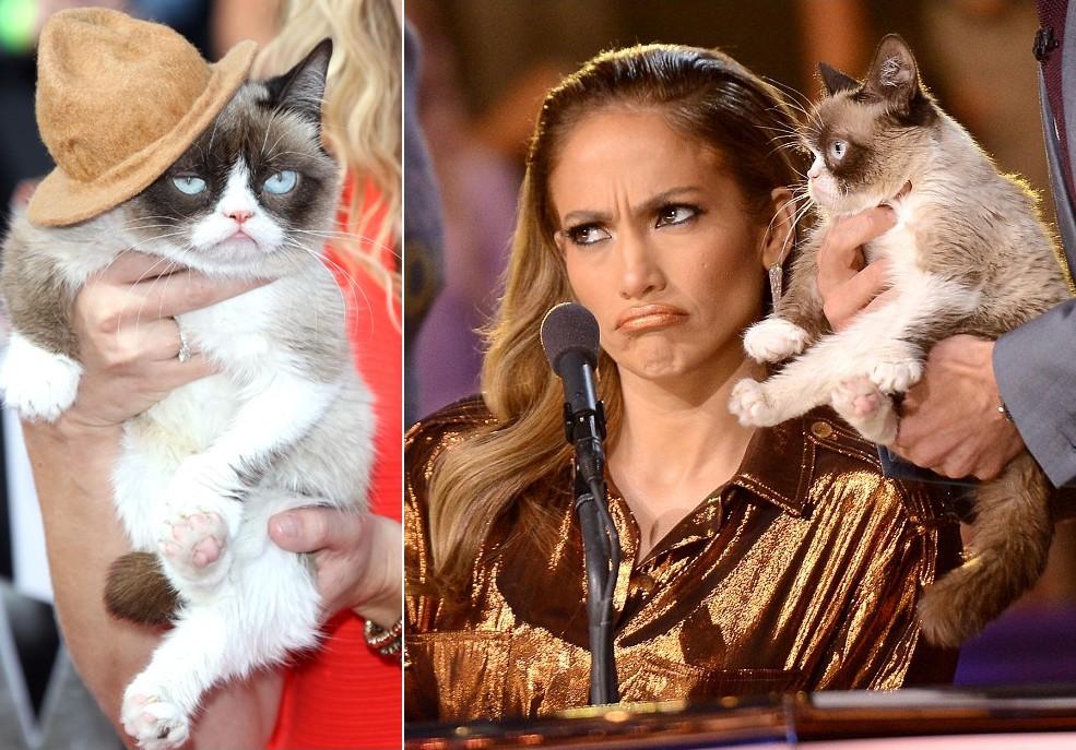 GrumpyCat11 10 заветных секретов успеха самого богатого кота в мире
