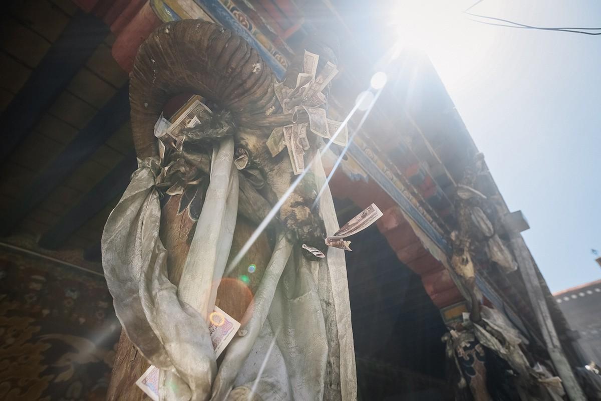 Tsurpkhu24 В поисках волшебства: жемчужина Тибета — Цурпху