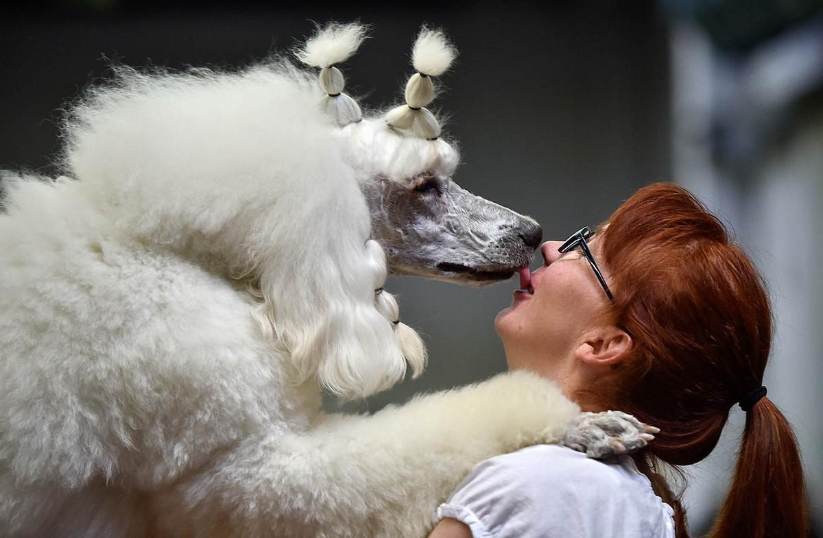 bestkisses25 Лучшие поцелуи — 2014