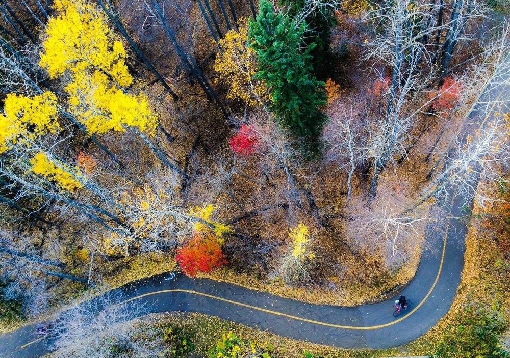 Лучшие снимки года от National Geographic