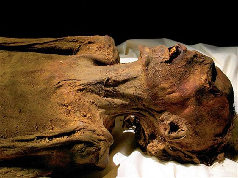 ArchaeoDiscoveries05 25 самых удивительных в истории археологических находок