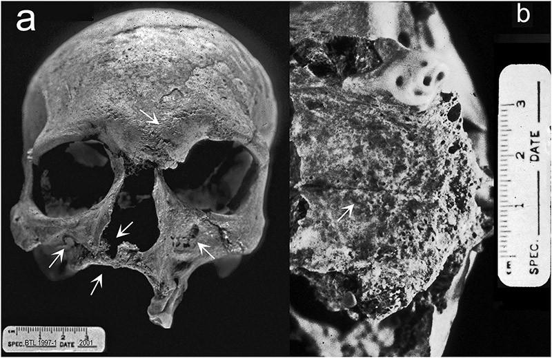 ArchaeoDiscoveries06 25 самых удивительных в истории археологических находок