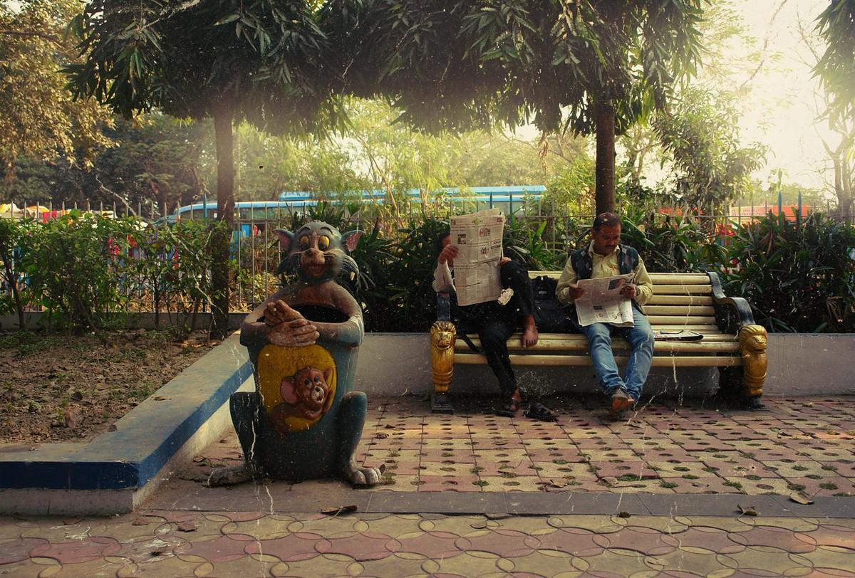 Calcutta k38 За что я люблю Калькутту: Мать Тереза, золотое дерево и рикши прямоходячие