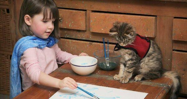 Как кошка Тула помогает девочке с аутизмом