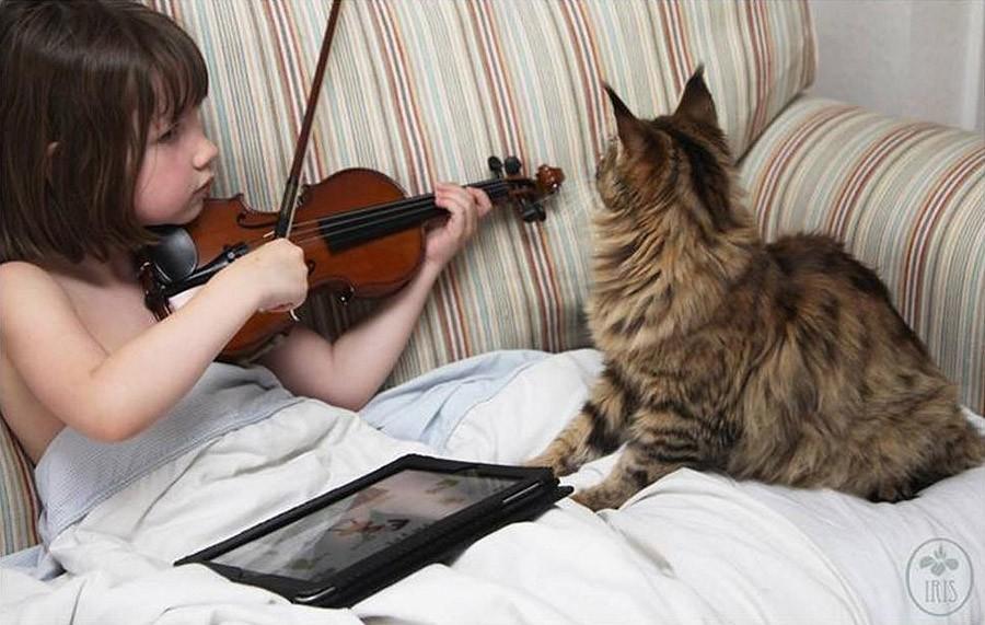 IrisandThula06 Как кошка Тула помогает девочке с аутизмом