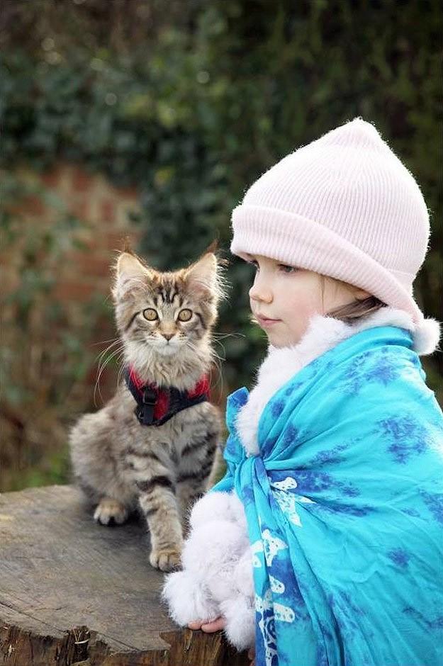 IrisandThula18 Как кошка Тула помогает девочке с аутизмом