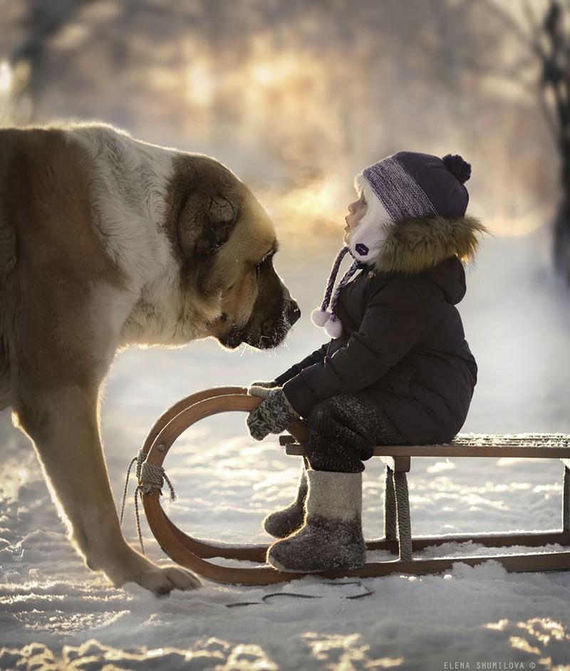 KidsWithAnimals11 Россиянка создает потрясающие фотографии своих детей с животными в деревне