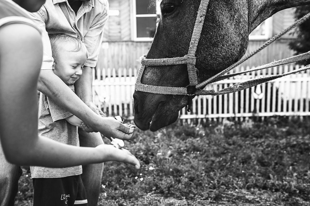 Yusupova 15 Татарская деревня глазами польского фотографа Алиции Юсуповой