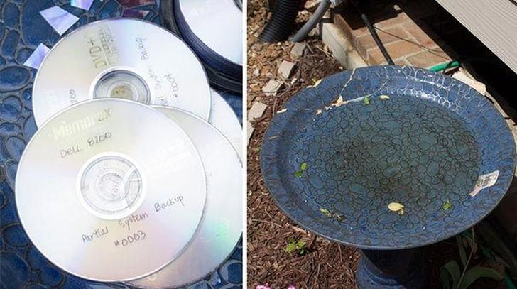 oldCDs01 25 блестящих идей по утилизации старых компакт дисков