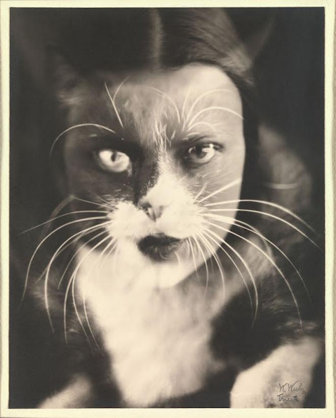 005Io + gatto Своими руками: обработанные снимки доцифровой эпохи