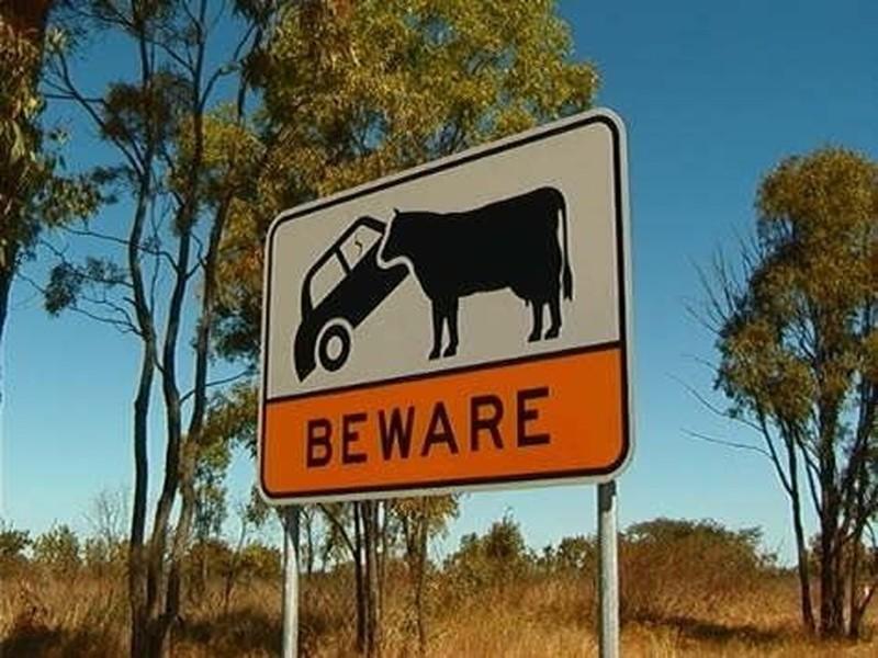 Australia07 Австралия: смертельный континент