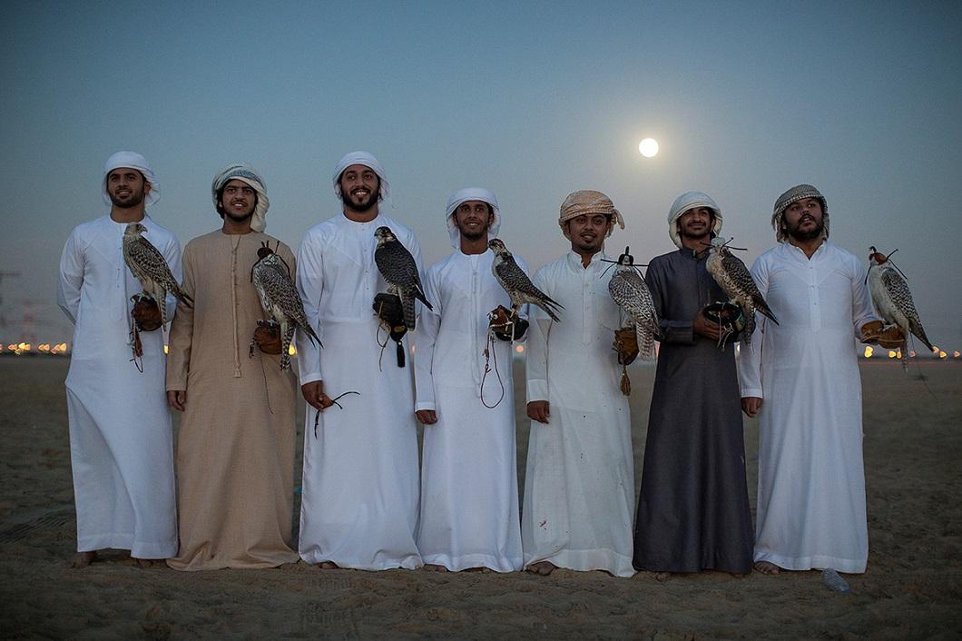 sokolinaya oxota v oae 15 Соколиная охота в Арабских Эмиратах