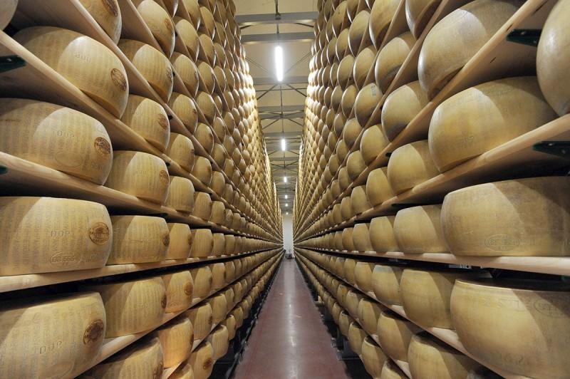 11DSC 8070 800x532 Эмилия Романья: вино, салями и автомобили