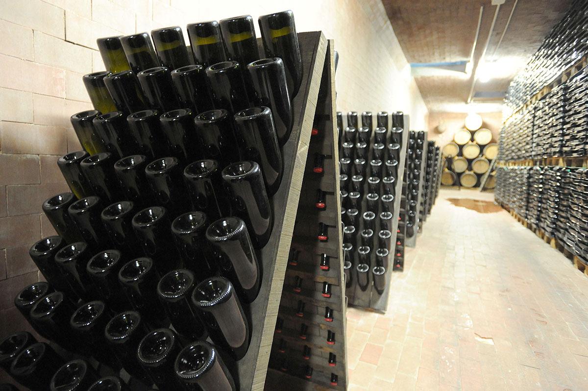 57DSC 8486 Эмилия Романья: вино, салями и автомобили