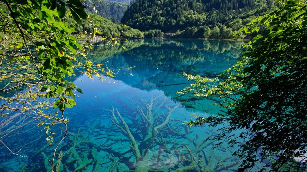 cleanwater16 35 уникальных мест планеты, которые удивят кристально чистой водой