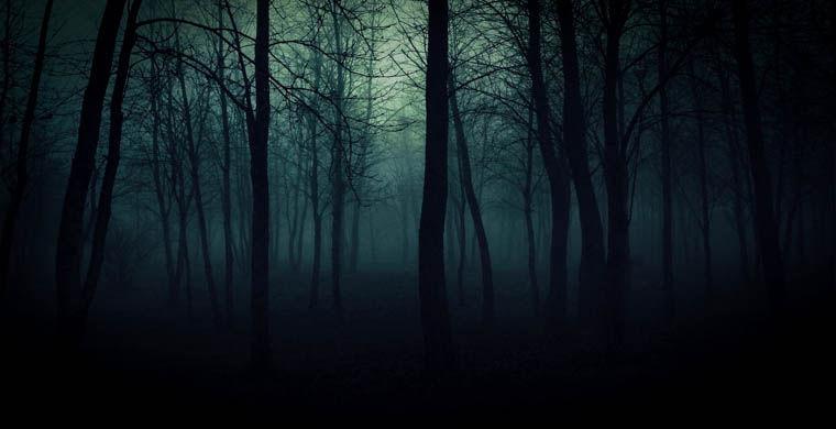 Самый страшный лес в мире » Страшные истории