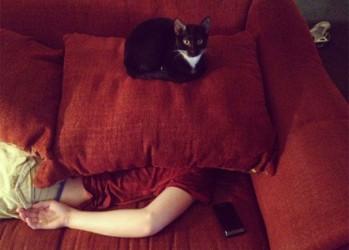 guilefulcats10