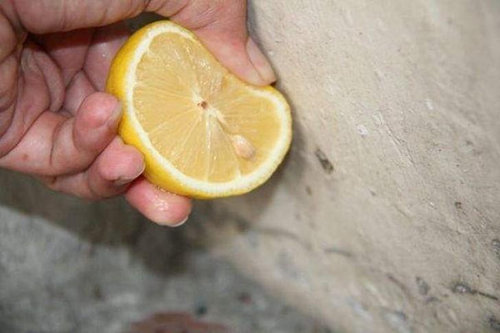 lemon32 30 интересных способов использования лимона